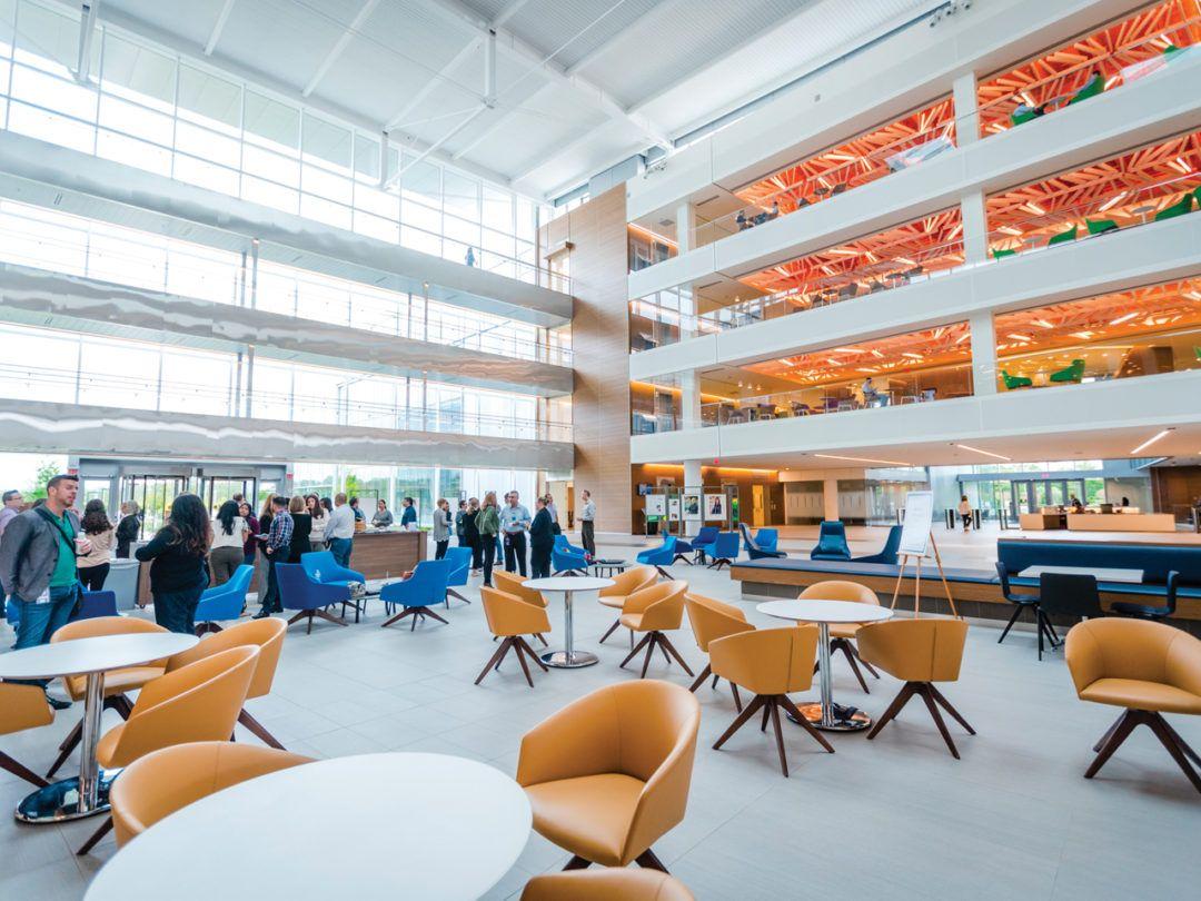 Bristol Myers Squibbs Campus